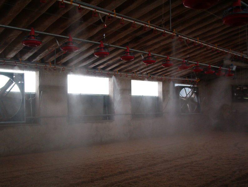 Impianti di raffrescamento interni per allevamenti